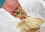 発酵後は竹本来の臭いは無くなり、お酒や麹のような発酵臭が漂います。