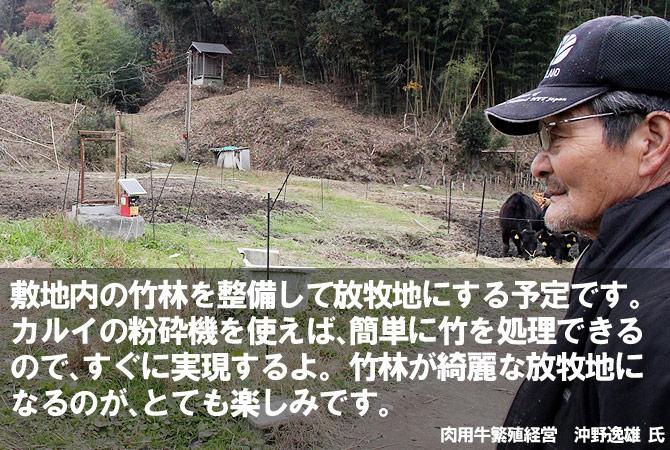 将来的には、整備した竹林を放牧地として活用したいと思います。