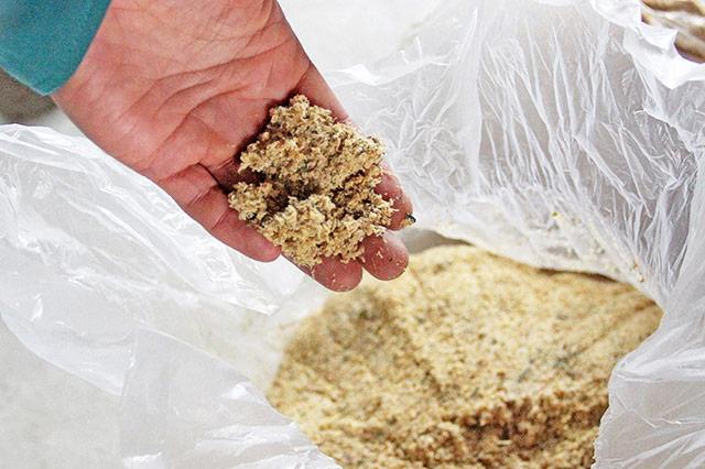 「竹を粉砕機で砕くと約1ミリ~5ミリの竹粉(竹チップ)が出来ます。 発酵2週間目の竹粉。竹の匂いは少ない。お酒や麹のような発酵臭が漂う。すこし湿り気がある。