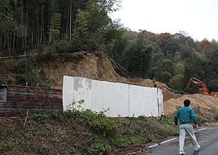 田村氏の竹林。2000坪ある。