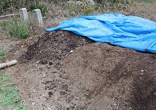 竹パウダーと牛糞を混ぜて作った有機肥料です。牛の体内のバクテリアも畑や田に良い働きをするようです。