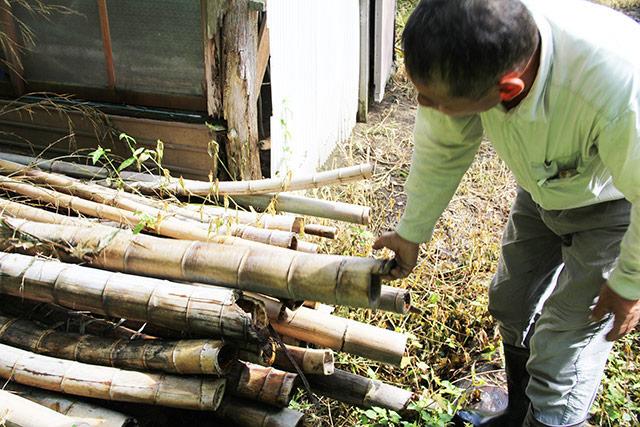 積んである竹を見つめる山川さん