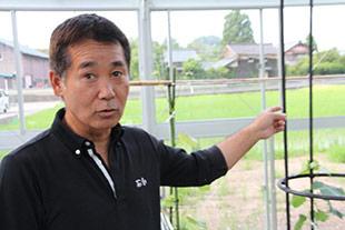 堆肥を使っている畑のことを説明する三田村社長