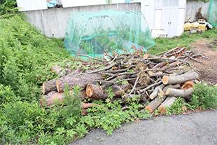 敷地に積まれた枝や木